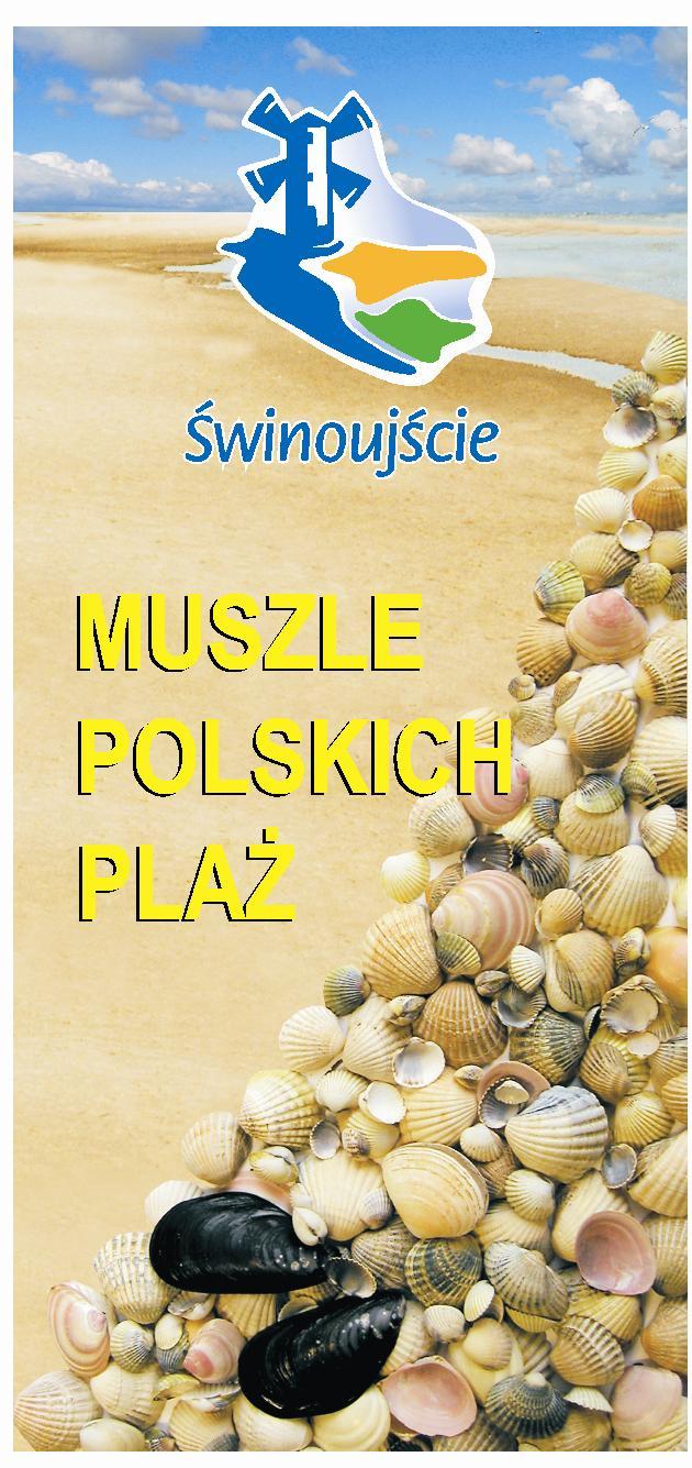 Muszle polskich plaż